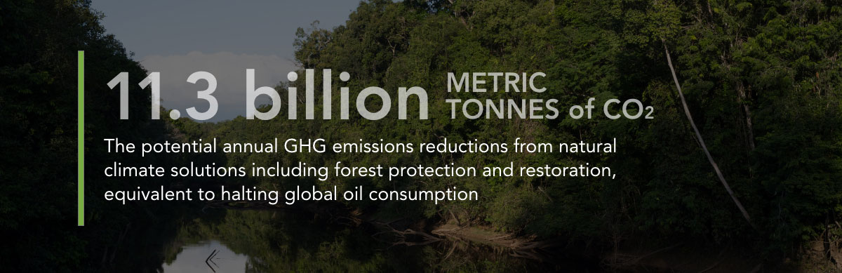 11.3 Billion Metric Tons The potential annual GHG emissions reductions from forest protection and restoration, equivalent to halting global oil production.